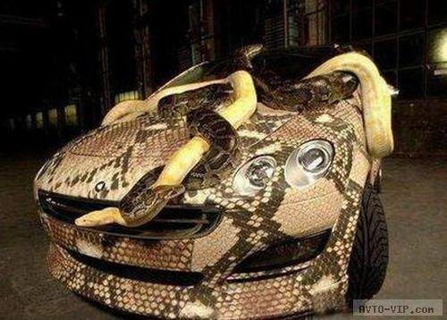 зверские автомобили snake car