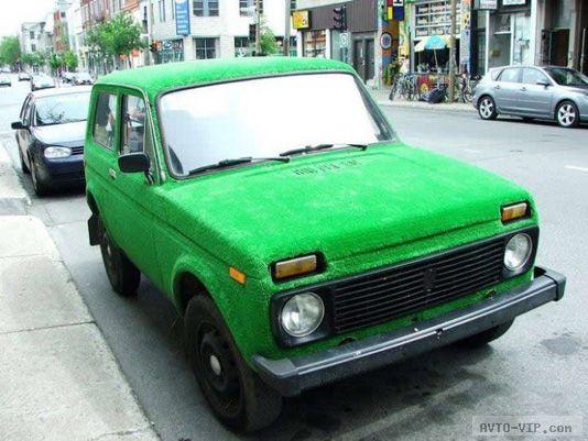 Нива Удивительные автомобили, покрытые травой