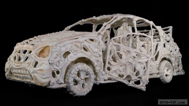 Collidonthus автомобильные кости
