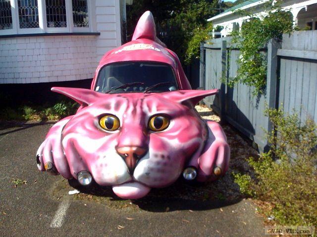 странные авто  Cat Car