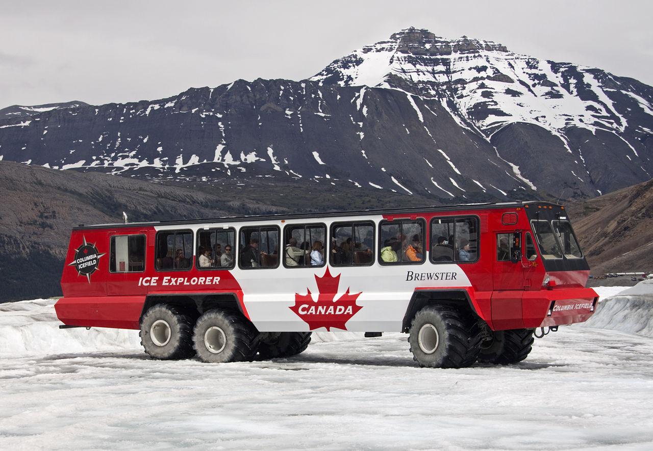 Terra Bus. Туристический автобус-монстр